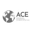 Associação dos Correspondentes Estrangeiros solidariza-se com Patrícia Campos Mello